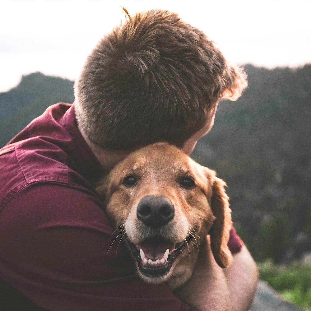 Psi savoir vivre w Ośrodku Hyrny